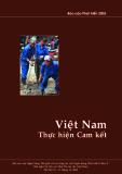 Việt Nam thực hiện cam kết