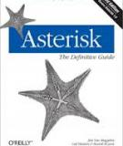 Asterisk: The Definitive Guide, 3rd Edition