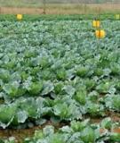 Phương pháp phòng trừ sâu, bệnh hại cây trồng - Châu Văn Hải