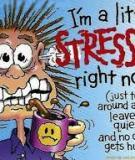 Những thực phẩm giúp giảm căng thẳng
