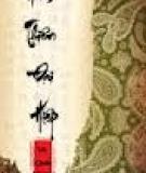 Nam Thiên Đại Hiệp - Vũ Quân