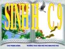 Bài 44: ẢNH HƯỞNG LẪN NHAU GIỮA CÁC SINH VẬT