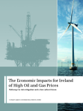 The Economic Impacts for Ireland  of High Oil and Gas Prices