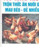 100 công thức trộn thức ăn nuôi gà mau đẻ- đẻ nhiều