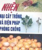 Nhện hại cây trồng và biện pháp phòng chống