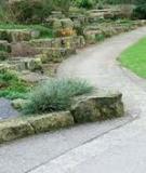 Vườn và những điều cần chú ý khi lập vườn