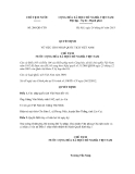 Quyết định số 206/QĐ-CTN