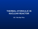 THERMAL-HYDRAULIC IN NUCLEAR REACTOR