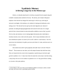 Symbiotic Memes: Achieving Longevity in the Memescape
