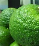 Kỹ thuật trồng và chăm sóc cam chanh
