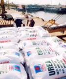 Giảm lượng phân bón hoá học: Tiết kiệm hàng triệu đồng/hécta