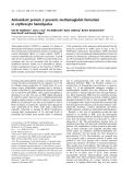 Báo cáo khoa học: Antioxidant protein 2 prevents methemoglobin formation in erythrocyte hemolysates