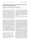 Báo cáo khoa học:  Purification and characterization of novel salt-active acharan sulfate lyase from Bacteroides stercoris HJ-15