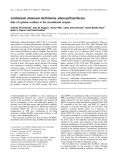 Báo cáo khoa học: Leishmania donovani methionine adenosyltransferase Role of cysteine residues in the recombinant enzyme
