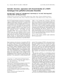 Báo cáo khoa học:  Genomic structure, expression and characterization of a STAT5 homologue from pufferfish (Tetraodon fluviatilis)