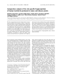 Báo cáo khoa học:  Comparative analysis of the site-specific N-glycosylation of human lactoferrin produced in maize and tobacco plants
