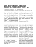 Báo cáo khoa học: Choline increases serum insulin in rat when injected intraperitoneally and augments basal and stimulated aceylcholine release from the rat minced pancreas in vitro