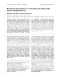 Báo cáo khoa học: Biochemical characterization of a U6 small nuclear RNA-specific terminal uridylyltransferase