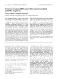 Báo cáo khoa học:  Preventing nondesired RNA-primed RNA extension catalyzed by T7 RNA polymerase