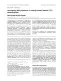 Báo cáo khoa học: Investigating RNA polymerase II carboxyl-terminal domain (CTD) phosphorylation ˆ Benoıt Palancade and Olivier Bensaude