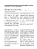 Báo cáo khoa học:  Expression and characterization of cyanobacterium heme oxygenase, a key enzyme in the phycobilin synthesis Properties of the heme complex of recombinant active enzyme