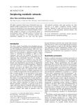 Báo cáo khoa học:  Deciphering metabolic networks