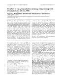 Báo cáo khoa học: The effect of ST2 gene product on anchorage-independent growth of a glioblastoma cell line, T98G