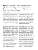 Báo cáo khoa học:  A functional polymorphism at the transcriptional initiation site in b2-glycoprotein I (apolipoprotein H) associated with reduced gene expression and lower plasma levels of b2-glycoprotein I