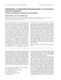 Báo cáo khoa học: Demethylation of radiolabelled dextromethorphan in rat microsomes and intact hepatocytes Kinetics and sensitivity to cytochrome P450 2D inhibitors