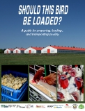 A guide for preparing, loading , and transporting poultry