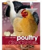Productivity and Technical Efficiency of Poultry Egg Production in Nigeria