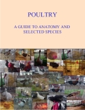 POULTRY A GUIDE TO ANATOMY AND  SELECTED SPECIES