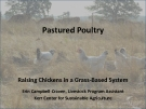 Pastured Poultry Raising Chickens in a Grass-Based System