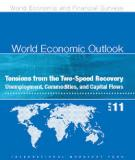 Tensions from the Two-Speed Recovery Unemployment, Commodities, and Capital Flows