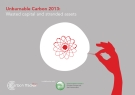 Unburnable Carbon 2013:  Wasted capital and stranded assets