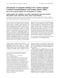 Báo cáo Y học: Determinants of antagonist binding at the a-amino-3-hydroxy5-methyl-4-isoxazolepropionic acid receptor subunit, GluR-D Role of the conserved arginine 507 and glutamate 727 residues