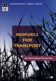 biofuels for transport an international perspective