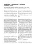 Báo cáo khoa học: Phosphorylation of Hrs downstream of the epidermal growth factor receptor