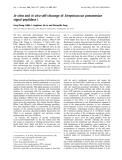 Báo cáo khoa học:  In vitro and in vivo self-cleavage of Streptococcus pneumoniae signal peptidase I