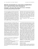 Báo cáo khoa học: Molecular characterization of a novel nuclear transglutaminase that is expressed during starfish embryogenesis