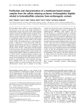 Báo cáo khoa học: Purification and characterization of a membrane-bound enzyme complex from the sulfate-reducing archaeon Archaeoglobus fulgidus related to heterodisulfide reductase from methanogenic archaea
