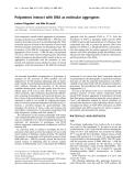 Báo cáo khoa học:  Polyamines interact with DNA as molecular aggregates Luciano D'Agostino1 and Aldo Di Luccia