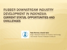 RUBBER DOWNSTREAM INDUSTRY  DEVELOPMENT IN INDONESIA: CURRENT STATUS, OPPORTUNITIES AND  CHALLENGES
