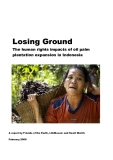 The human rights impacts of oil palm  plantation expansion in Indonesia