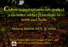 Carbon sequestration in sub-tropical soils under rubber plantations in north-east India