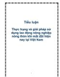 Tiểu luận  Thực trạng và giải pháp sử dụng lao động nông nghiệp nông thôn khi mất đất hiện nay tại Việt Nam