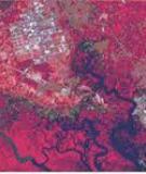 Arsenic - Một Hóa Chất Độc Hại Âm Thầm ở Đồng Bằng Sông Cửu Long