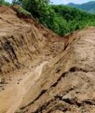 Môi trường đồng bằng sông Cửu Long : Đất và nước đều ngộ độc chất thải