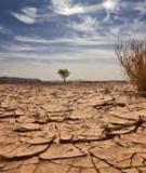Thay đổi khí hậu -Thực tại chính trị với Thực tại vật lý