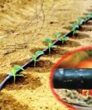 Công nghệ xử lý nước thải của Israel có ứng dụng được ở nước ta